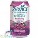 Zevia Sparkling Water Blackberry