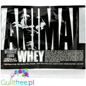 Animal Whey Chocolate Chip saszetka 34g