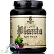 Planta™ Premium Plant Based Protein by Ambrosia Nutraceuticals, Mint Cacao