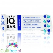 IQ Bar Blueberry Brain & Body plant protein bar with Lion's Mane, MCTs, Omega-3, flavonoids, vitamin-E and choline
