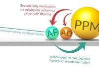 trenning zwiększający metabolizm