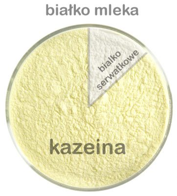 zawartosc białka serwatkowego w mleku